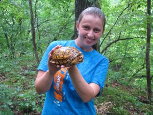 Trail tortoise at Fall Creek